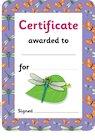 Minibeast certificates