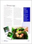 Lesson 1: Dinosaur eggs (1 page)