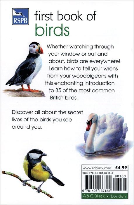 bird coloring pages rspb shop - photo#14
