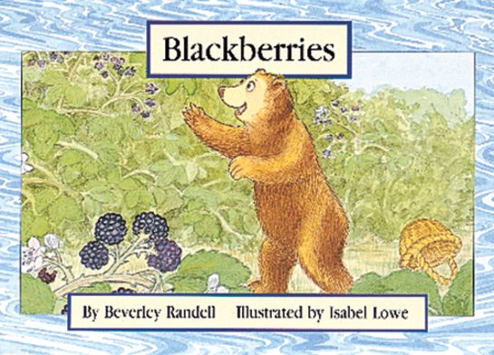 Pm Teens Use Blackberries 103