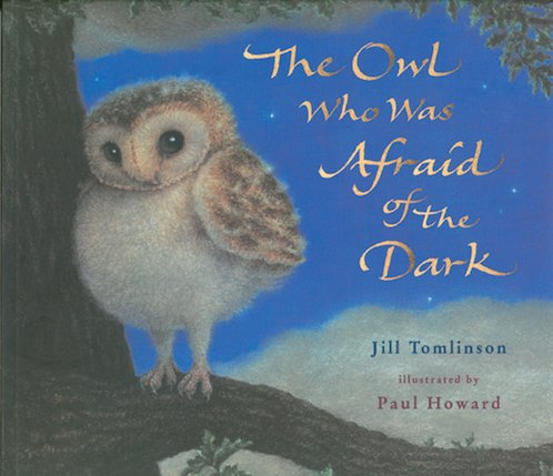 The Owl Who Was Afraid of the Dark (Picture Book)
