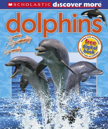 discover more  dolphins