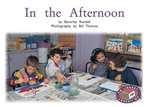 PM Green: In the Afternoon (PM Non-fiction) Levels 14, 15 x 6