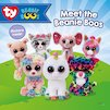 Meet the Beanie Boos