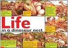 Life in a dinosaur nest