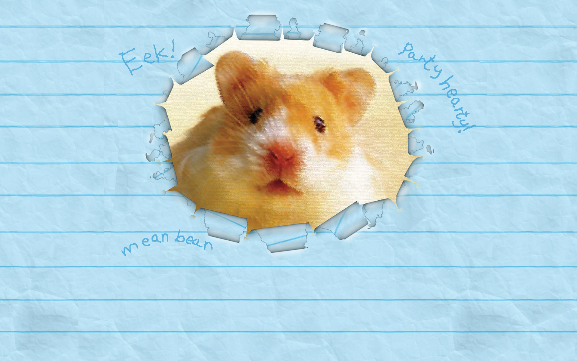Humphrey Wallpaper Scholastic Kids Club