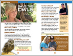 Hoot - Sample Page (1 page)