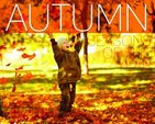 Seasons of the Year: Autumn