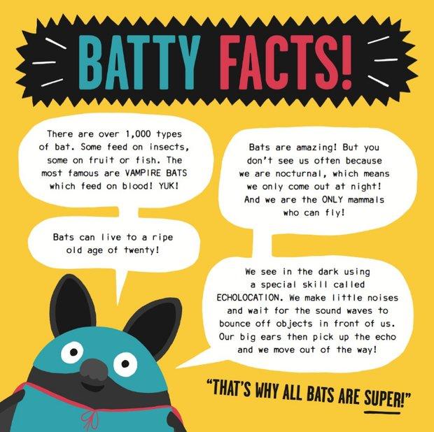 Batty Facts!