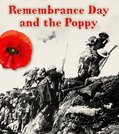 Important Events in History: Remembrance Day and the Poppy