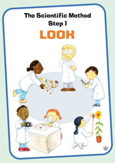 science experiment posters primary ks1 ks2 teaching resource