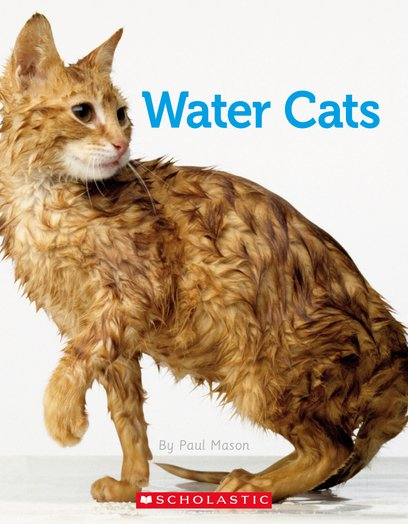 Connectors Silver: Water Cats x 6