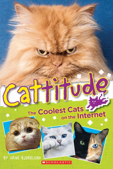 Cattitude: The Coolest Cats on the Internet
