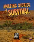 PM Ruby: Amazing Stories of Survival (PM Guided Reading Non-fiction) Level 28 (6 books)