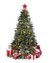 QT2 LL christmas tree.jpg