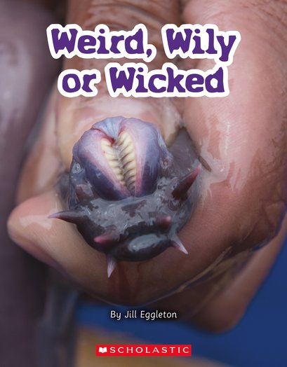 Weird, Wily or Wicked x 6