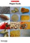 Mayan foods