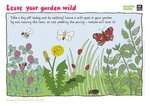 Wild garden (1 page)