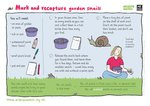 Mark and recapture garden snails (1 page)