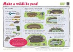 Make a wildlife pond (1 page)