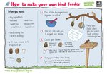 Make your own bird feeder (1 page)