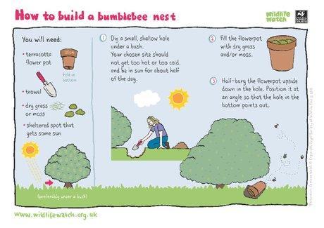 Build a bumblebee nest