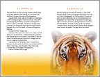 Life of Pi - Sample Page (1 page)