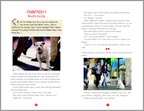 Hotel for Dogs Sample Page (2 pages)