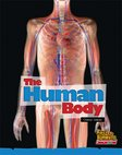 The Human Body (Non-fiction) Level 11