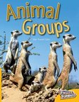 Animal Groups (Non-fiction) Level 6