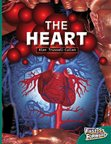The Heart (Non-fiction) Level 14
