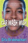 Barrington Stoke Teen: Car Wash Wish