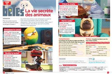 menu allonsy_p6_7.jpg
