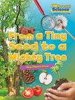 FUNdamental Science: From a Tiny Seed to a Mighty Tree - How Plants Grow