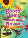 FUNdamental Science: Roots, Stems, Leaves and Flowers - All About Plant Parts