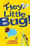 Hey Little Bug! Poems for Little Creatures