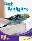 PM Writing 1: Pet Budgies (PM Yellow/Blue) Levels 8, 9 x 6