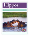PM Turquoise: Hippos (PM Non-fiction) Levels 18, 19 x 6