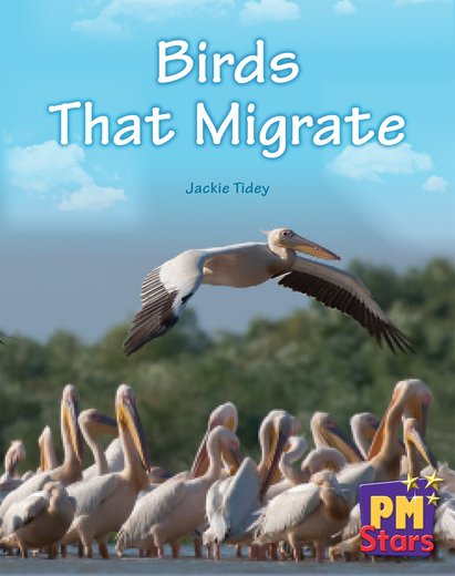 PM Blue: Birds That Migrate (PM Stars) Levels 11, 12 x 6