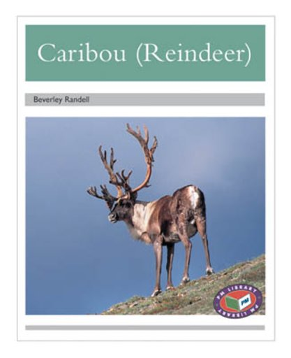 PM Silver: Caribou (Reindeer) (PM Non-fiction) Levels 23, 24 x 6