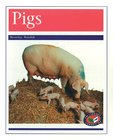 PM Purple: Pigs (PM Non-fiction) Levels 19, 20 x 6