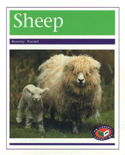 PM Purple: Sheep (PM Non-fiction) Levels 19, 20 x 6