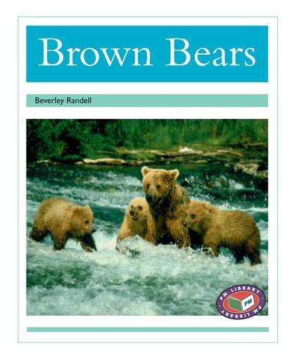 PM Turquoise: Brown Bears (PM Non-fiction) Levels 18, 19 x 6