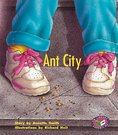PM Turquoise: Ant City (PM Storybooks) Level 18 x 6