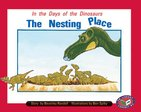 PM Turquoise: Nesting Place (PM Storybooks) Level 18 x 6