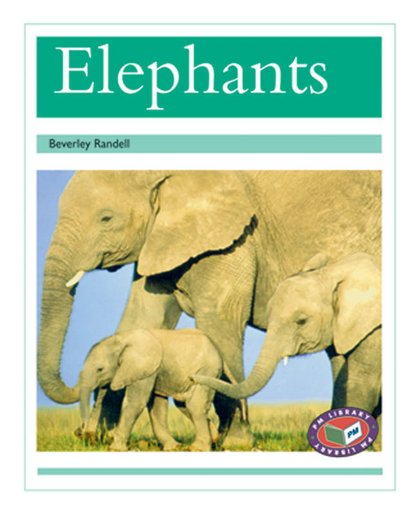 PM Turquoise: Elephants (PM Non-fiction) Levels 18, 19 x 6