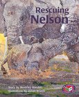 PM Turquoise: Rescuing Nelson (PM Storybooks) Level 17 x 6