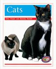 PM Orange: Cats (PM Non-fiction) Levels 15, 16 x 6
