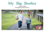 PM Yellow: My Big Brother (PM Non-fiction) Levels 8, 9 x 6