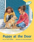 PM Turquoise: Puppy at the Door (PM Plus Storybooks) Level 18 x 6